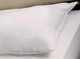 PRISTINE Pokrowiec antyroztoczowy na poduszkę 55x35 - Na poduszkę