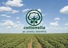 COTTONELLA Kołdra letnia antyalergiczna 200x220 (2)