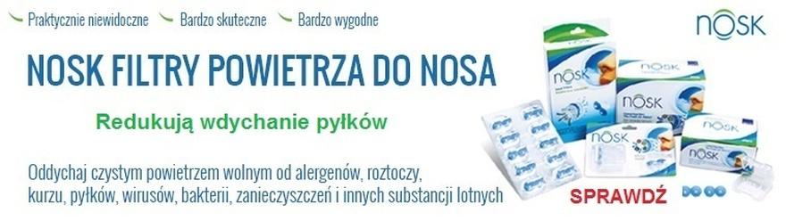 filtry powietrza nosk